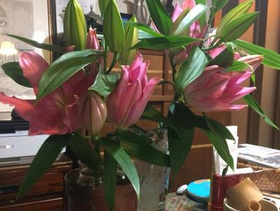 新宿の花を抱えて