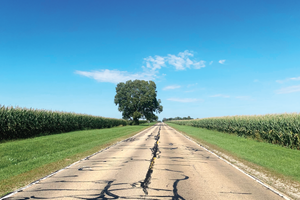 Long empty road surrounded by corn fields and a bright blue sky