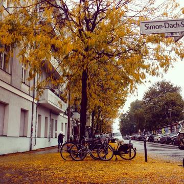 Herbst, 2014