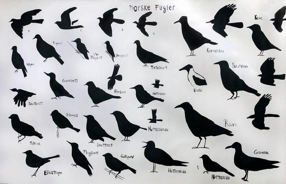 Norske Fluger