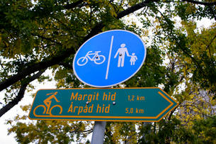 Signs, 2007