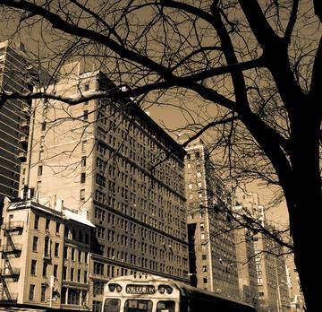 5th Avenue, 2009