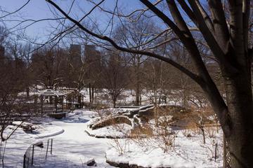 Central Park, 2009