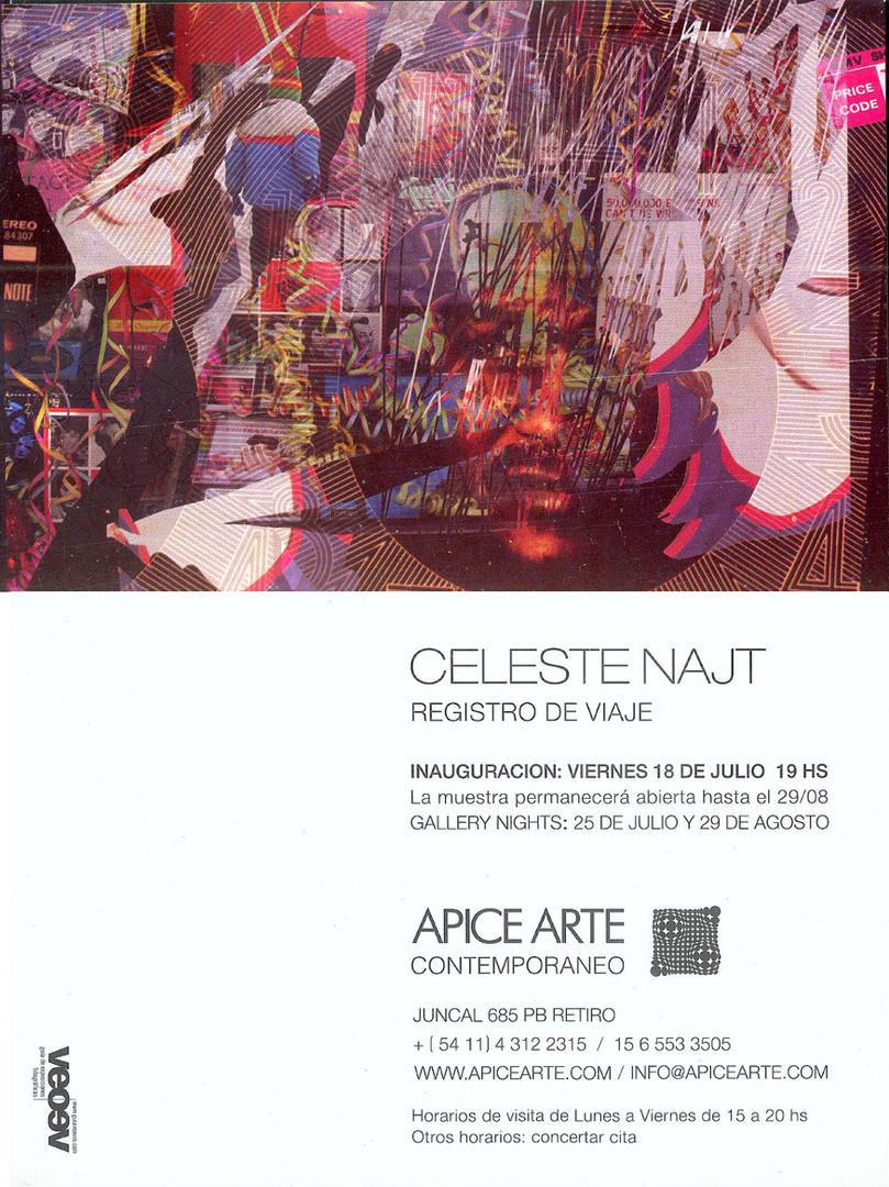 Apice arte, Buenos aires, 2008