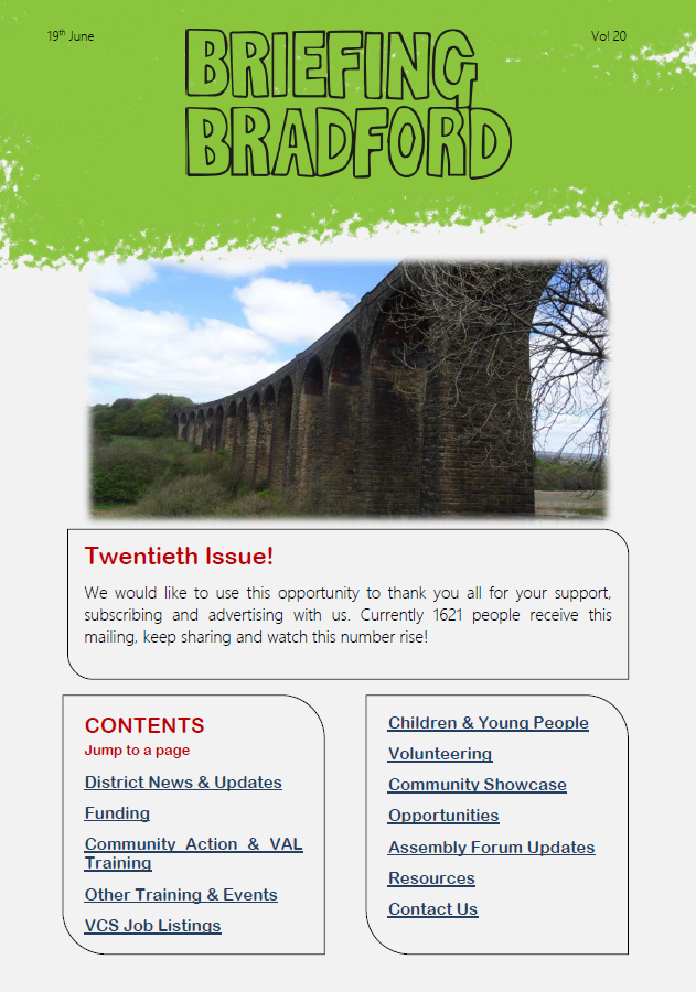Issue 20 of the Voluntary Sector newsletter Briefing Bradford
