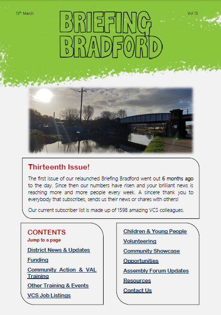 Issue 13 of Briefing Bradford, the Bradford Voluntary Sector Newsletter
