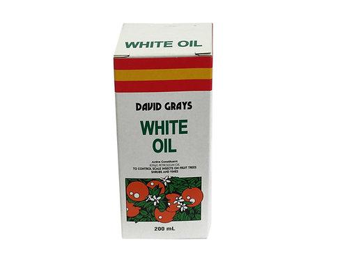 DAVID GRAY'S WHITE OIL