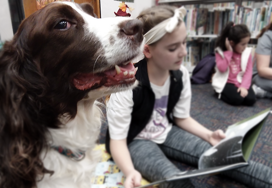 read to dawg.png