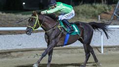 Al Ain | Race no.4 | Reema