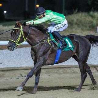 Szczepan's victory in Al Ain for Abdallah Al Hammadi