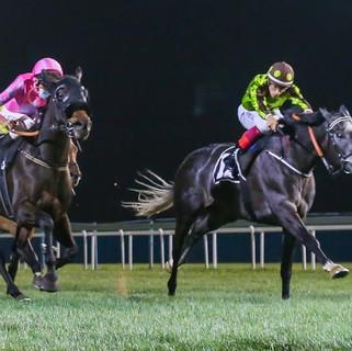 Ganbaru and Antonio Fresu win in Abu Dhabi