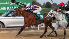 Al Ain | Al Maqam Race | Sawt Assalam (AE)
