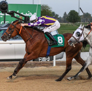 Szczepan took second victory from Sawt Assalam (AE) Trained by I Al Hadhrami