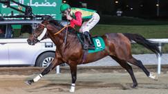 Shabyat Al Rawdah Stakes