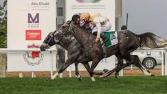 Abu Dhabi | Race no. 3 | Wathba Stallions Cup