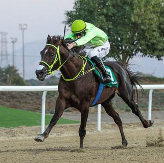 Szczepan wins in Al Ain on 12.02