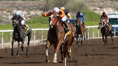 Jebel Ali | 5.02.2021/ Race 2 | Al Shafar Investment