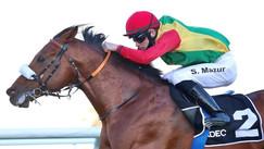 Abu Dhabi | Race no. 2 | Shakhbout City