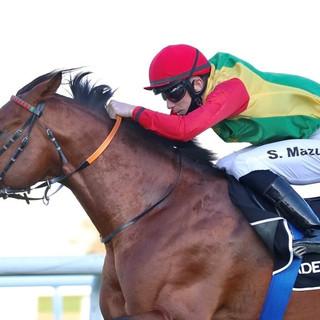 Szczepan won in Abu Dhabi for Royal Cavalry Oman