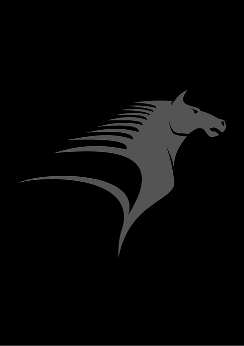Projekt_bez_tytułu-17.png
