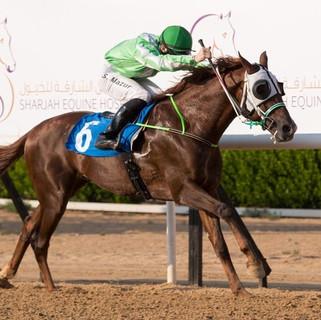 Szczepan won at Sharjah