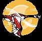 OAC logo.png