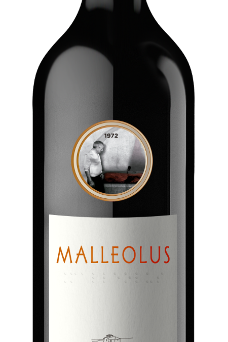 Emilio Moro Malleolus 2015 MAGNUM