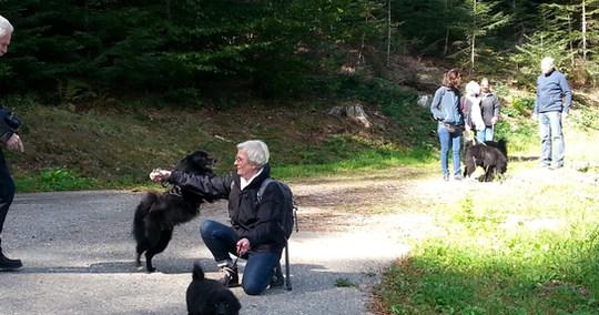 Cara auf der Schwarzwaldwanderung