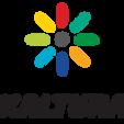 Kaltura Logo.png