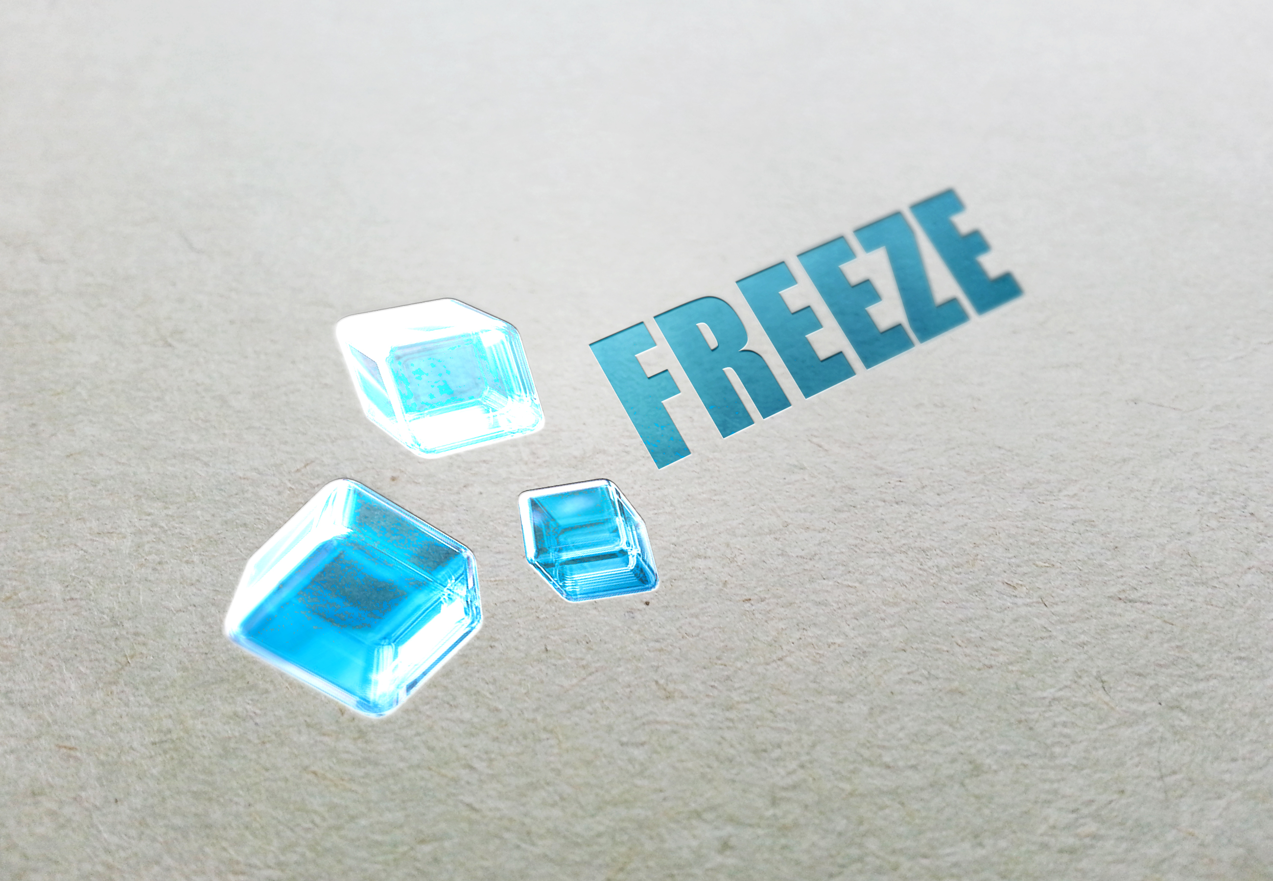 LOGO FREEZE V1