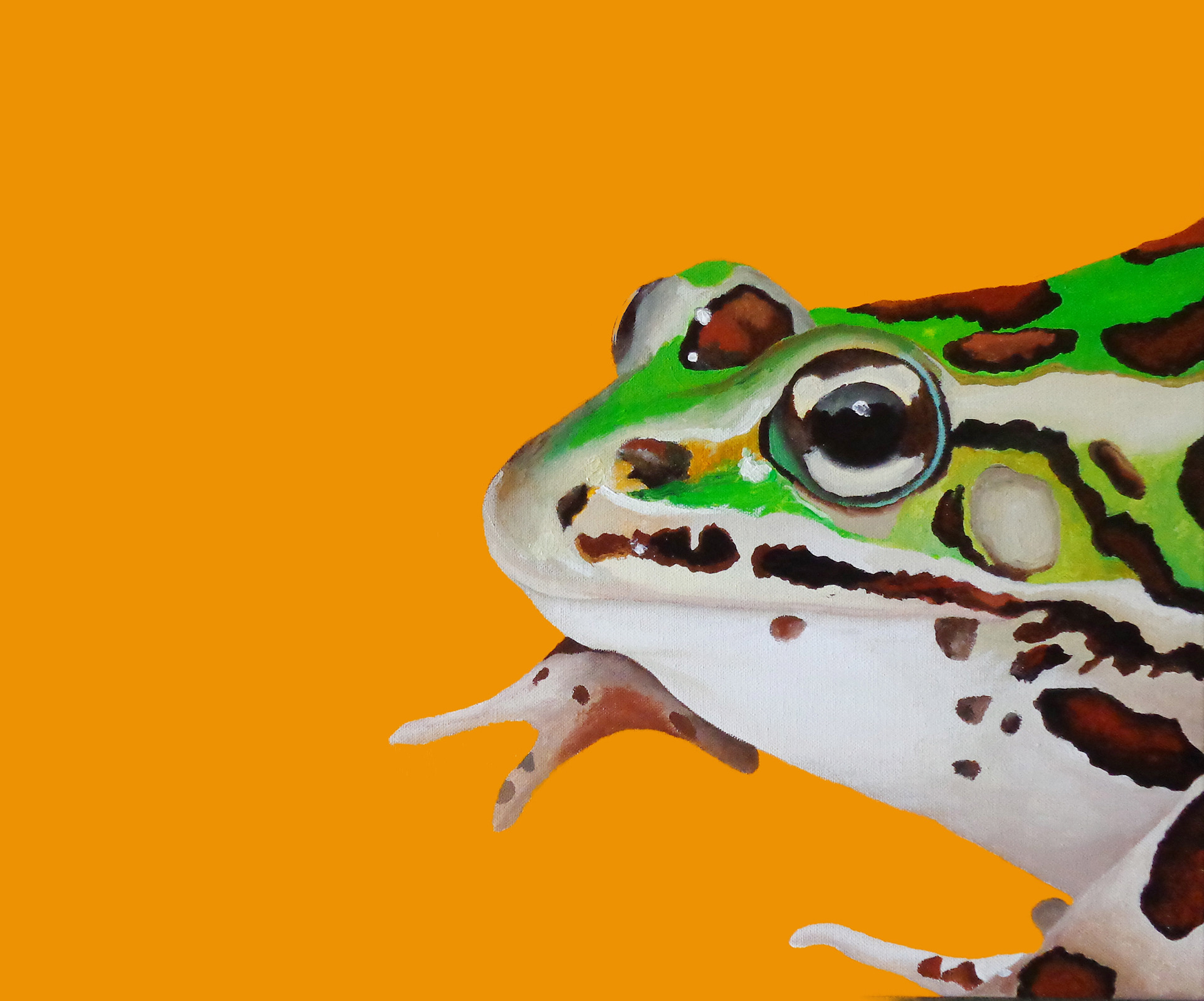 FROG_GREEN
