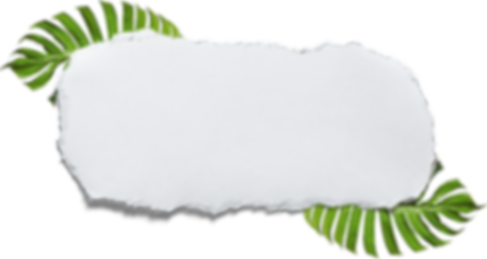 paper with leaves.png