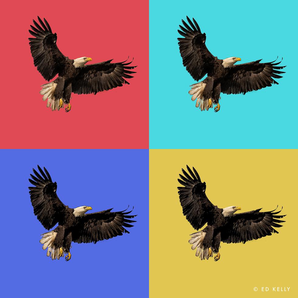 eagle group.jpg