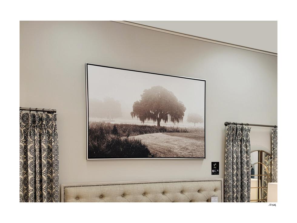40x60 Oak/fog