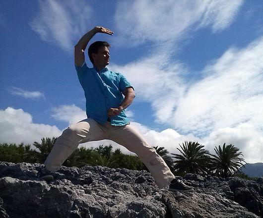 Form für Fortgeschrittene mit 108 Bewegungen. Feine Differenzierung von Yin und Yang. Nach Yang Chengfu. Die alte Form des traditionellen Yangstils orientiert sich verstärkt an der Kampfkunst und Anwendung.