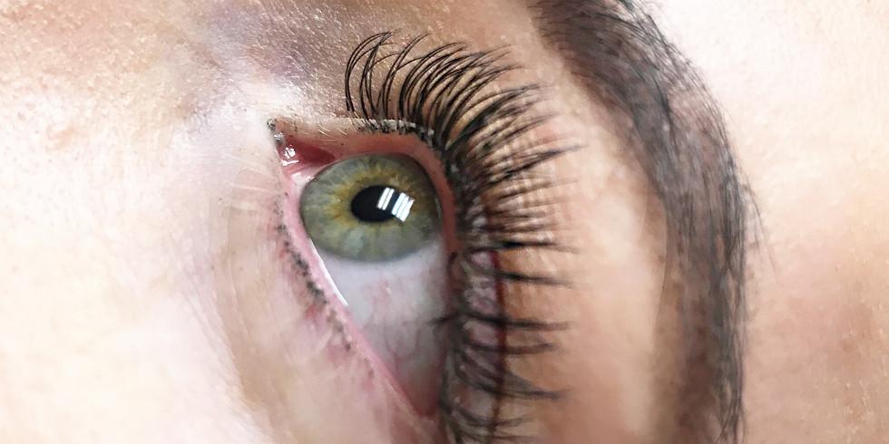 Eyelash Certification Training