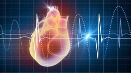 Lo que usted debe saber sobre Ecocardiogramas