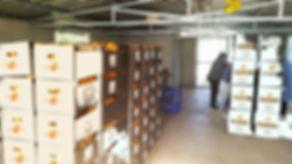 almacen casero2.jpg