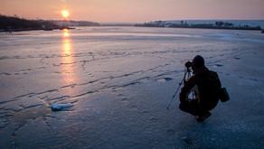 Basic Tips for the Wildlife Photographer