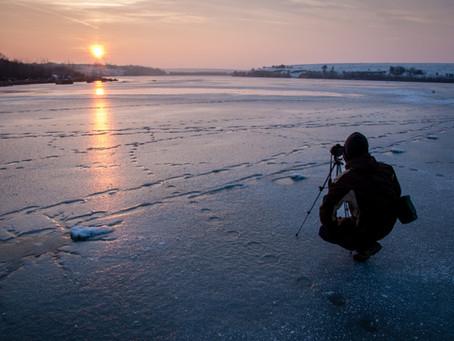 Dicas para fotógrafos de vida selvagem