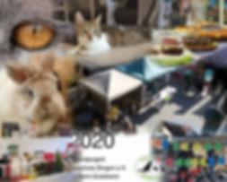 TdoT-Collage.jpg