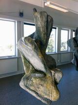 Steinformasjon, Polarsenteret
