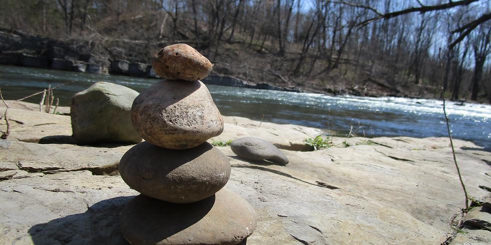 Free Morning Meditations - Tuesdays 9:30 AM EST