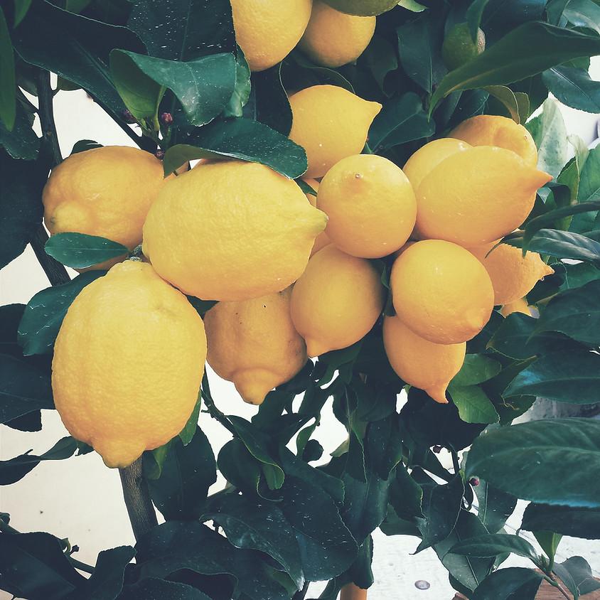 21/07 - Cheesecake al limone