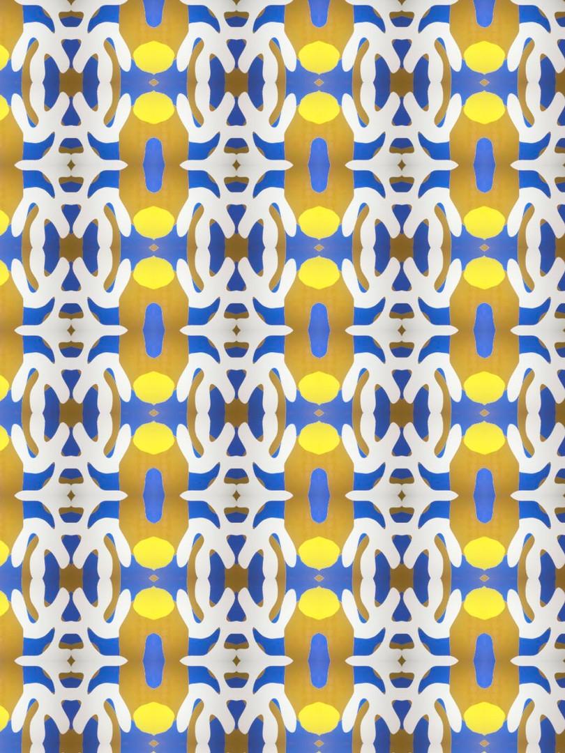 estampado amarillo azul.jpg