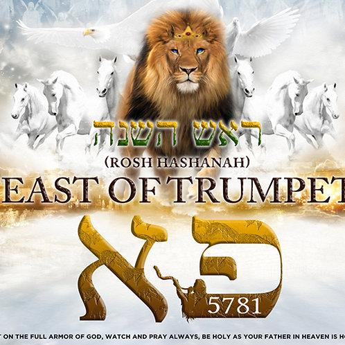 5781 -Feast of Trumpet