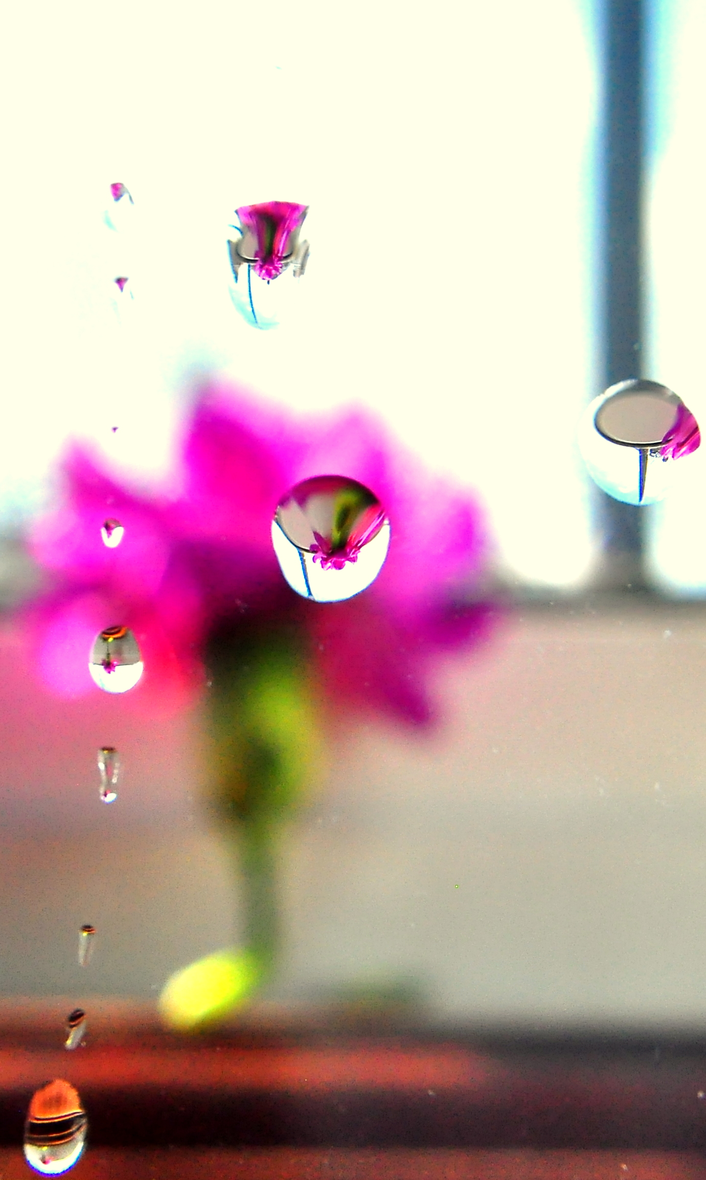 Droplet Reflection