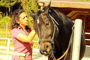 massage cheval .jpg