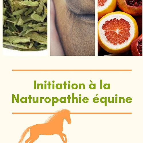 Initiation à la naturopathie équine
