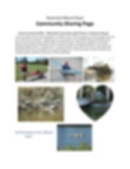 Community Sharing Page AE Wilson turtles